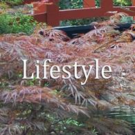 Lifestyle-Topics